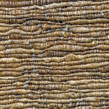 Anichini Naari Hand Loomed Silk Fabric Detail