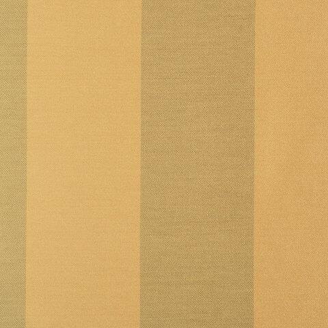 Anichini Persia Wide Stripe Shower Curtains