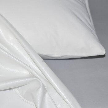 Anichini Top Secret Protective Mattress Cover