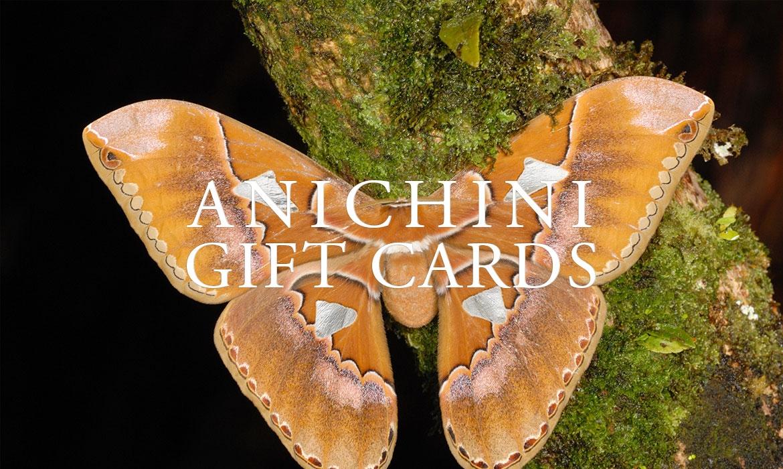 ANICHINI Gift Cards