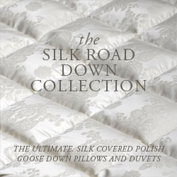 Anichini Silk Covered Down Pillows And Duvets